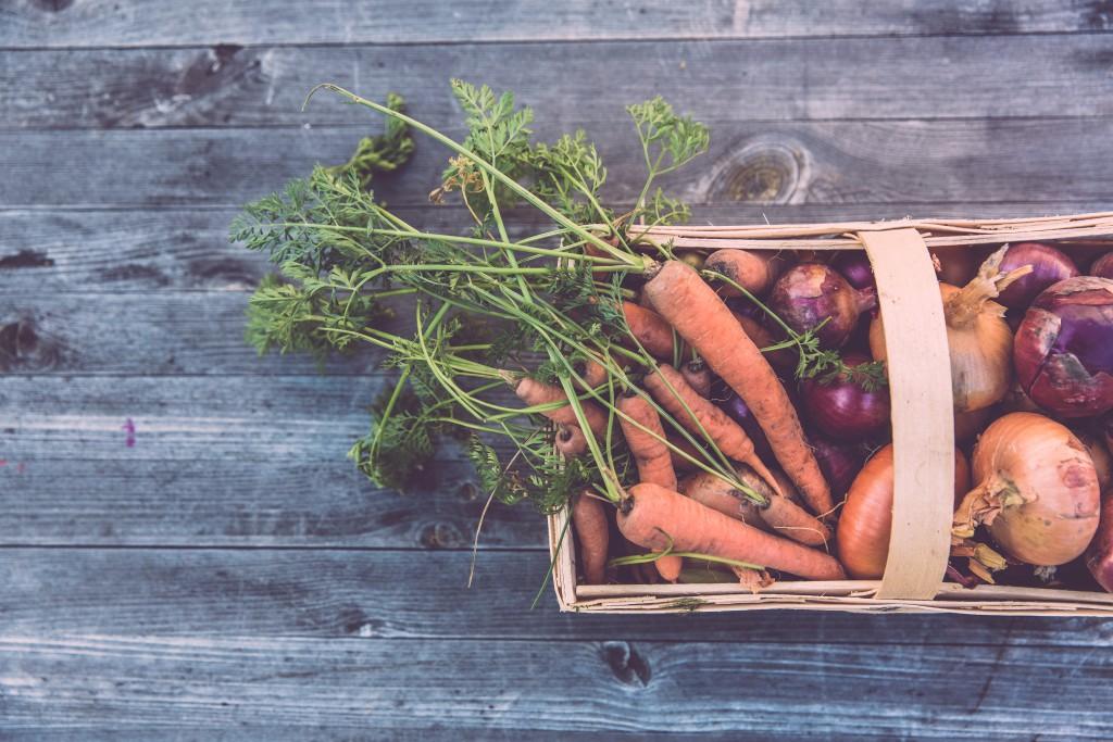 carote, pomodori e altri prodotti della terra in un cesto