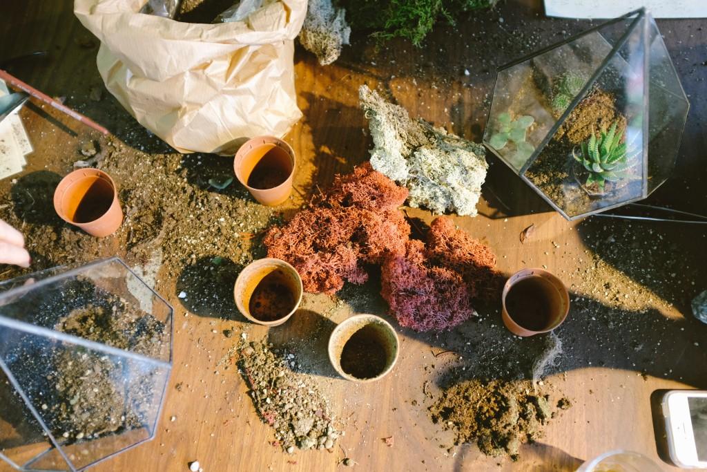 come curare il tuo piccolo orto a casa - terrine e terreno