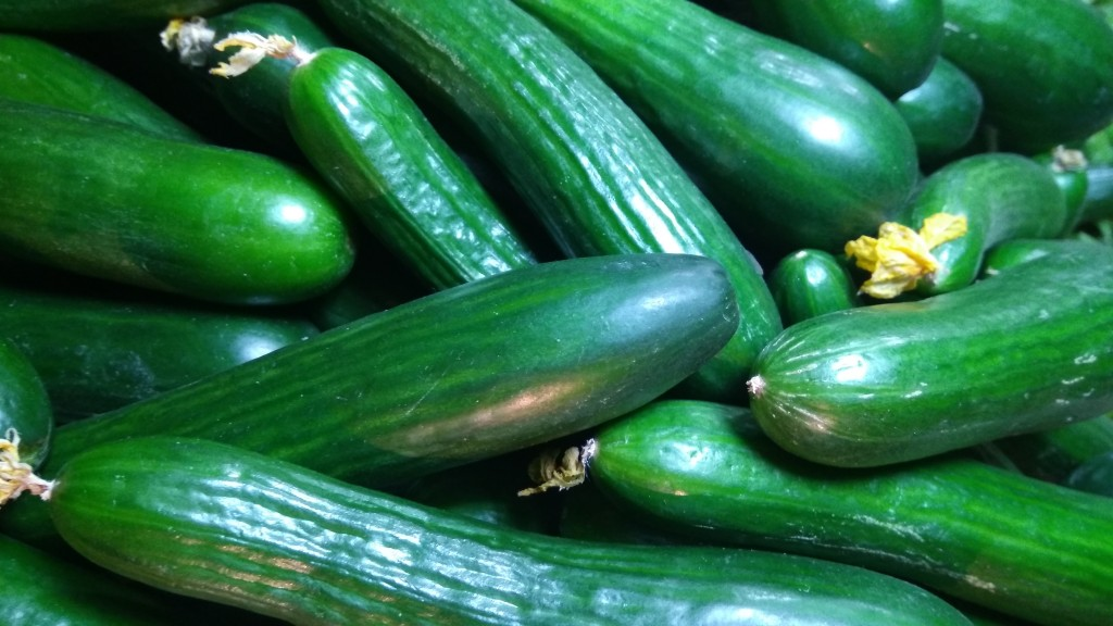 tante ricette fantasiose con le zucchine da Anffas Sala