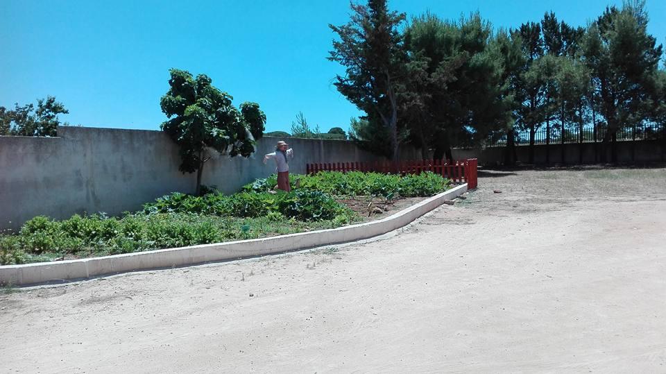 spaventapasseri e steccato per proteggere il tuo orto